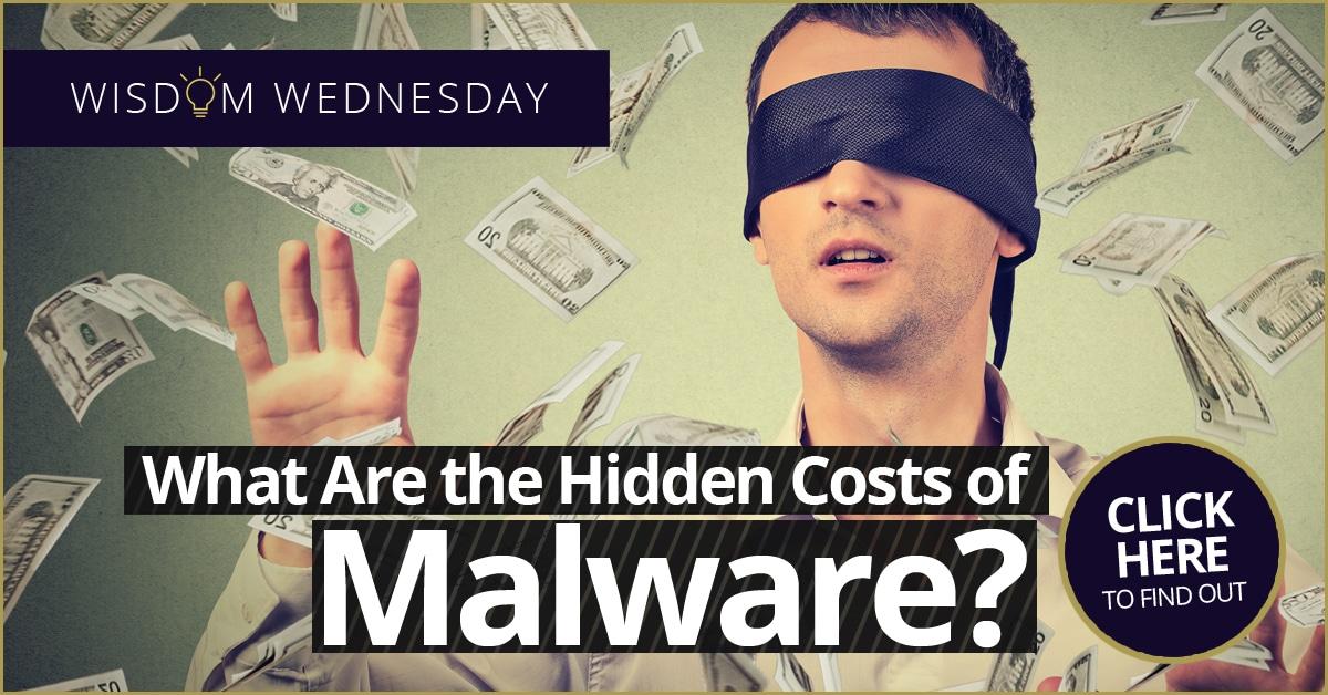 Hidden Costs of Malware
